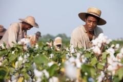 12-YEARS-A-SLAVE_ALLE-STILLS-(8)