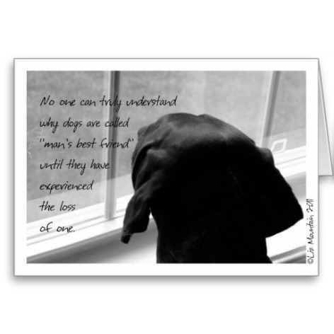 sympathy_card_loss_of_pet_dog-r8bee6e205ec84fc38b9b7e38f93bfa06_xvuak_8byvr_512